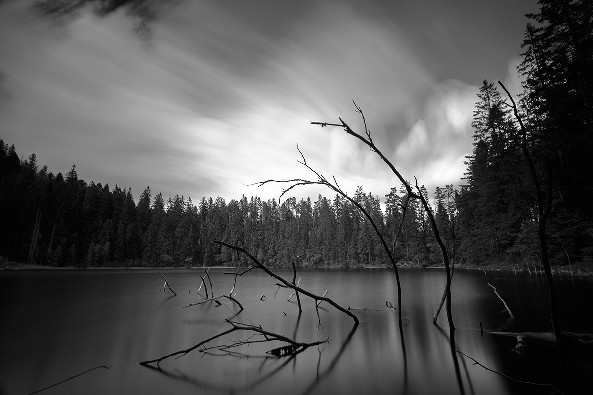 Landschaftsfotografie Workshop Schwarzwald