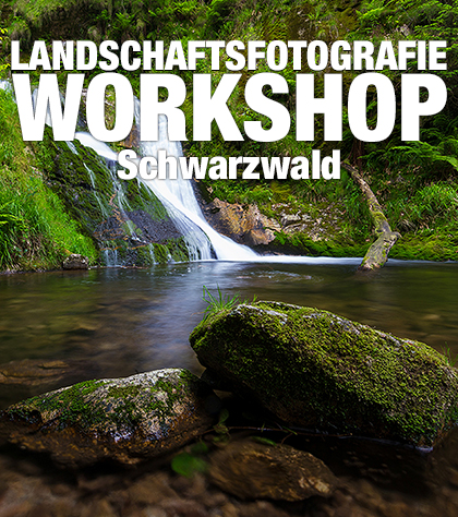 Grafik-Landschaftsfotografie-Schwarzwald-Produktbild