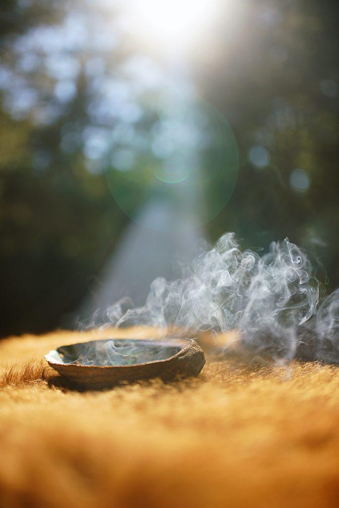 Sage-Burn-web