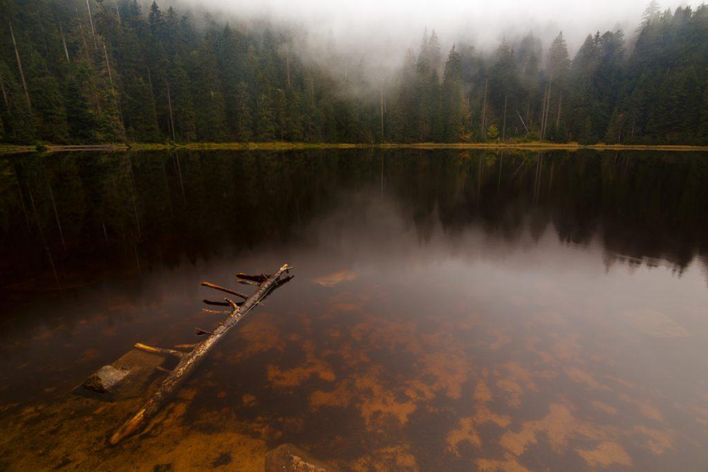 Landschaftsfotografie Workshop Schwarzwald mit Benjamin Jaworskyj