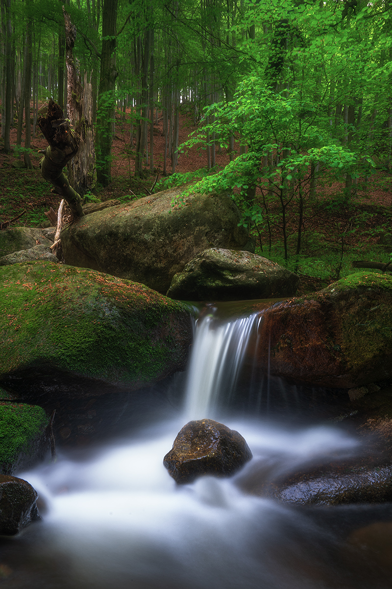 Landschaftsfotografie Workshop Harz Benjamin Jaworskyj