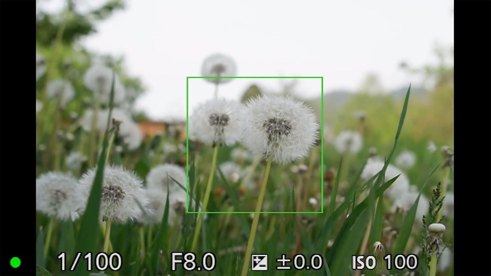 Einfach fotografieren lernen kurs