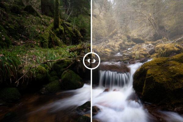 Grundlagen Bildbearbeitung Luminar AI Kurs fuer Anfaenger